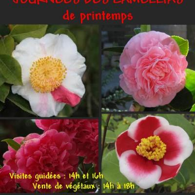 AFFICHE CAMELLIAS PRINTEMPS-1-2014