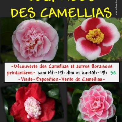 AFFICHE CAMELLIAS PRINTEMPS 2016