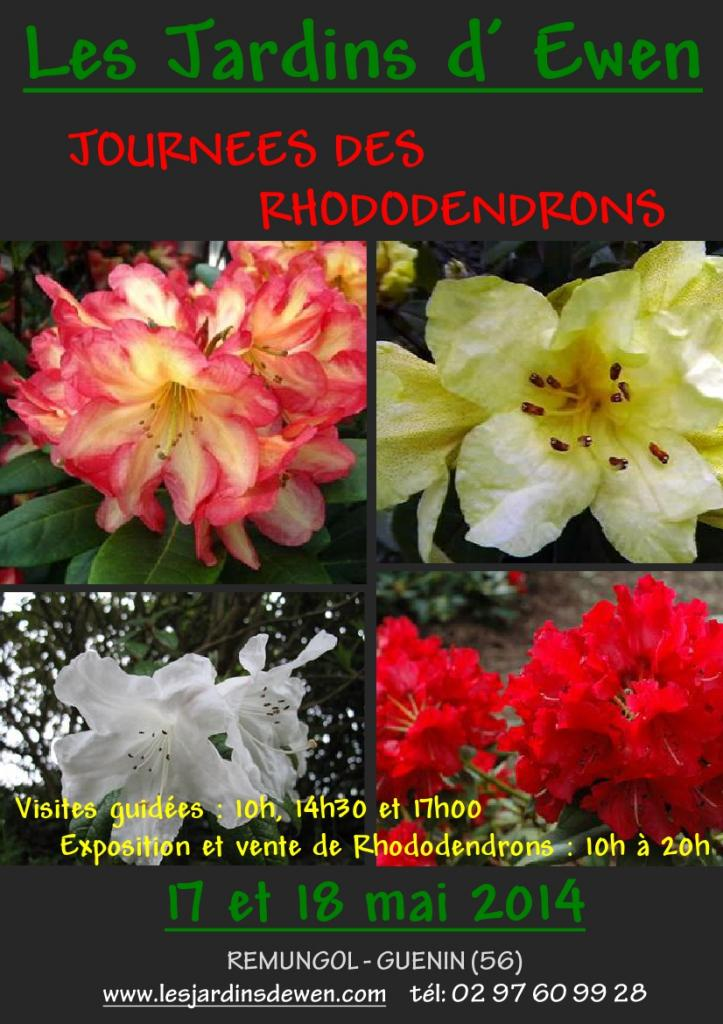 AFFICHE RHODODENDRONS-1-2014