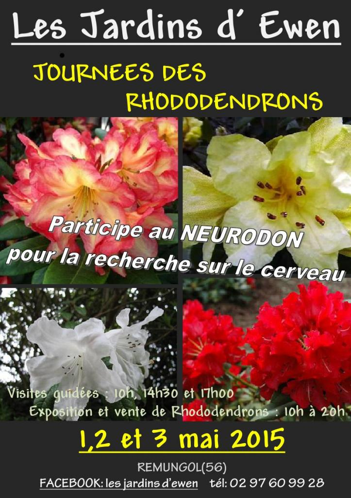 AFFICHE RHODODENDRONS 2015