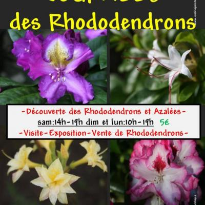 AFFICHE RHODODENDRONS 2016