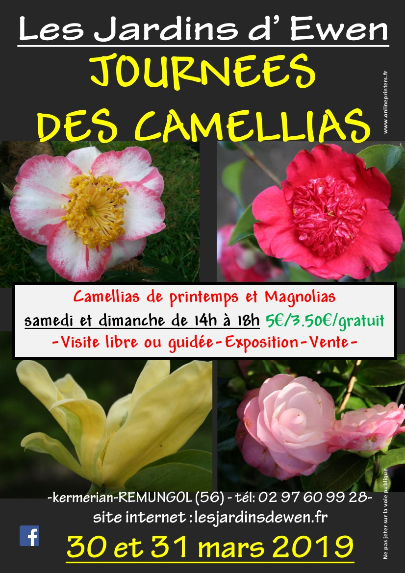 Affiche camellias printemps 2019