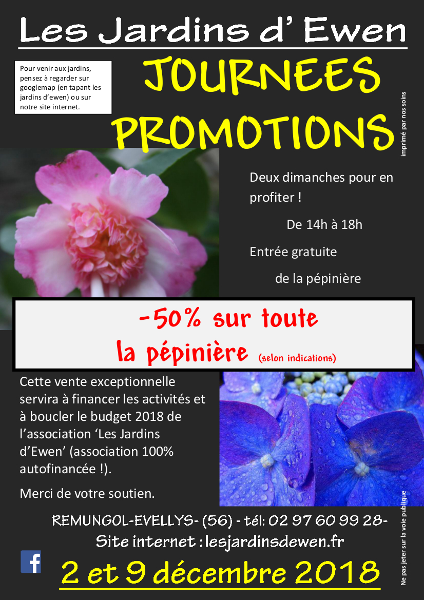 Affiche journees promotions 2018 dec