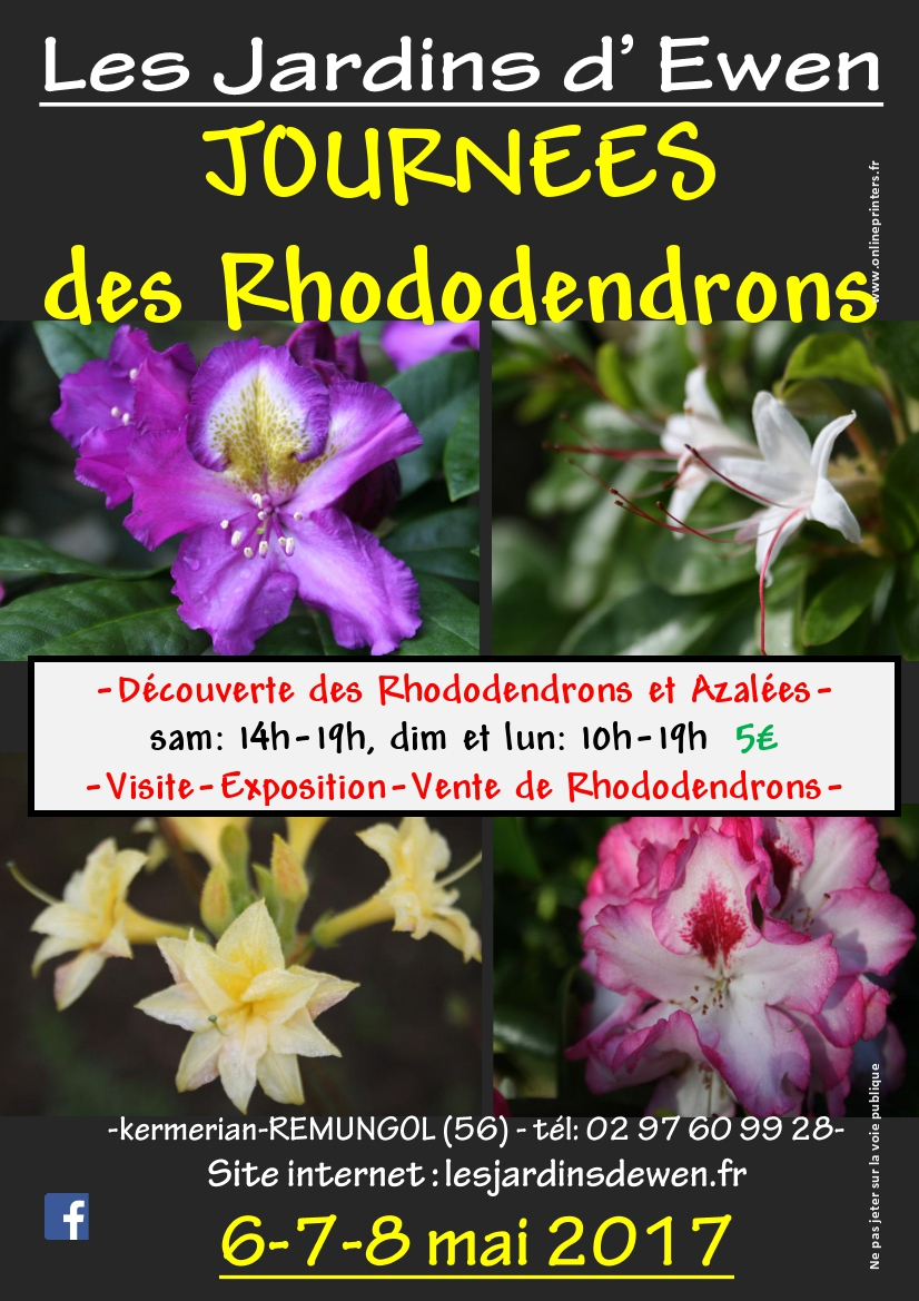 Affiche rhododendrons 2017