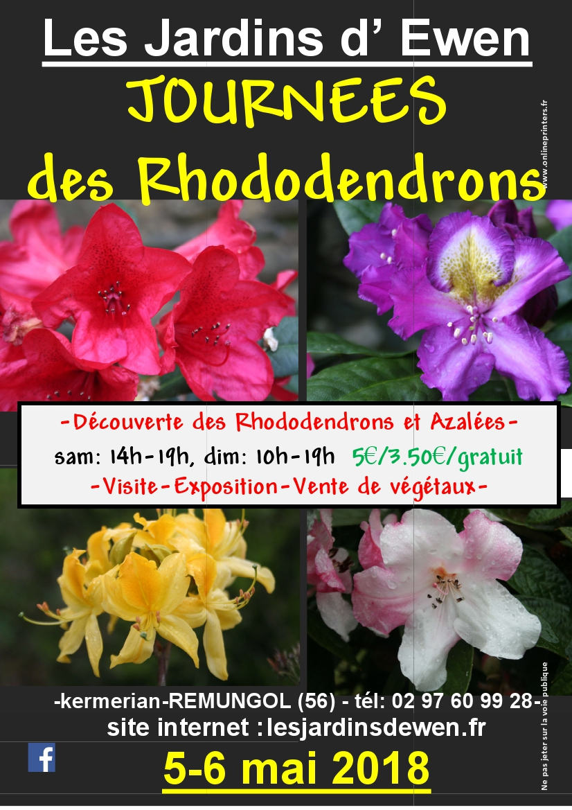 Affiche rhododendrons 2019