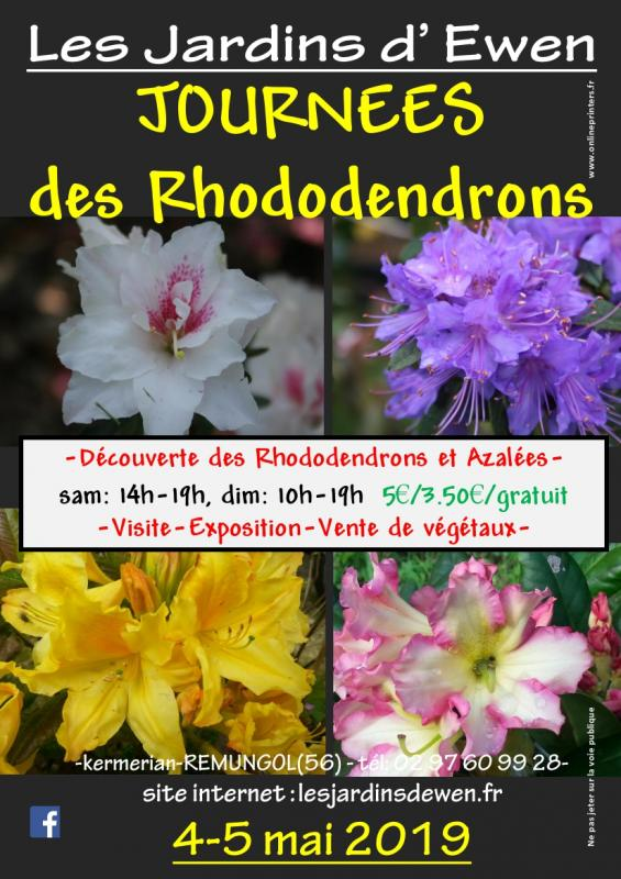 Affiche rhododendrons 2020