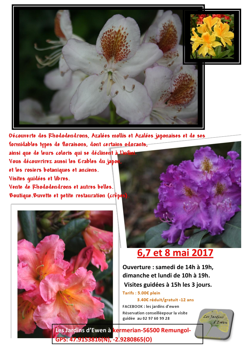 Prospectus rhododendrons 2017 verso
