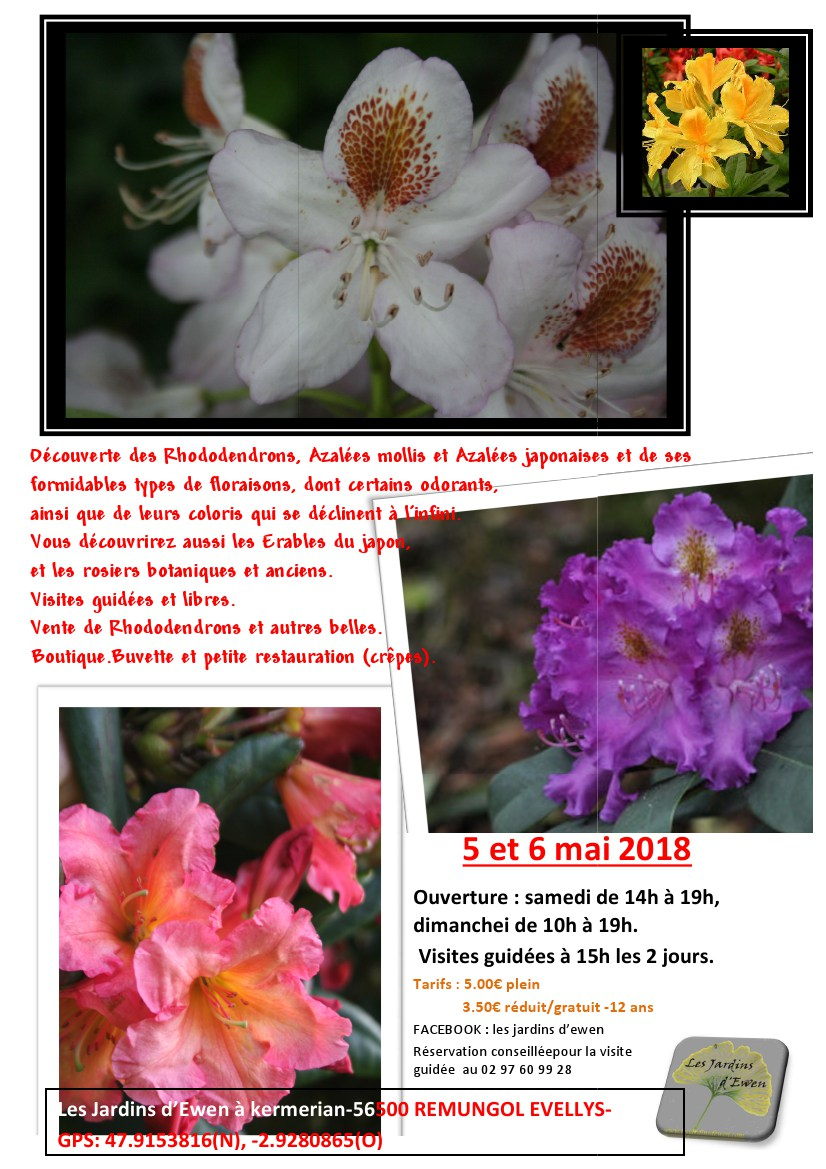 Prospectus rhododendrons 2018 verso