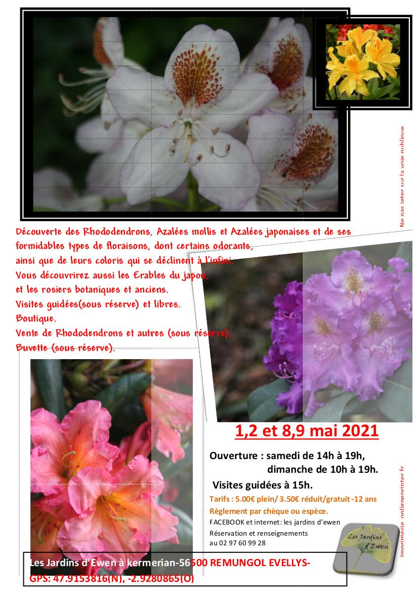 Prospectus rhododendrons 2021 verso 1
